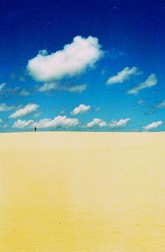 Frazer Island, Queensland, Australia. Island made of sand.