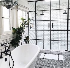 glass and steel framed door for the shower...