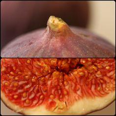 p fruit