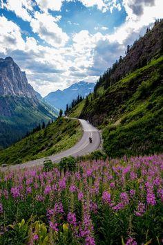 Carretera del estado de Montana en Estados Unidos.