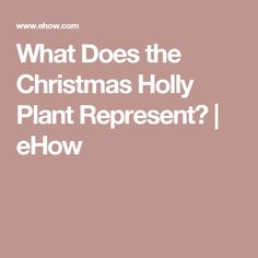 What Does the Christmas Holly Plant Represent? | eHow