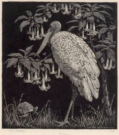 Philosophy, 1925 by Lionel Lindsay on Curiator, the world's biggest collaborative art collection. Linocut Prints, Art Prints, Block Prints, Illustrations, Illustration Art, Collagraph, Tinta China, Scratchboard, Encaustic Painting