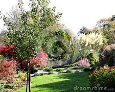 pretty-building-sloping-autumn-garden-preston-park-rockery-many-interesting-plants-including-large-pampas-grass