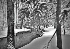 Catoctin Mountain Park - Big Hunting Creek after a recent snowfall.