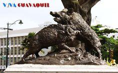 - Guayaquil #guayaquil #ecuador #turismo