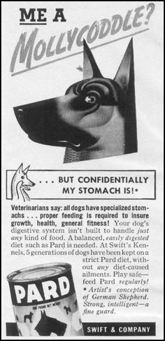 PARD DOG FOOD, WOMAN'S DAY, 04/01/1941, p. 54