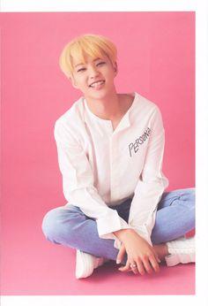 stop adding people to the group chat - Chapter 15 - Jo_Ji Hoshi Seventeen, Seventeen Debut, Woozi, Jeonghan, All Pop, Won Woo, Vernon Hansol, Joshua Hong, Pledis 17