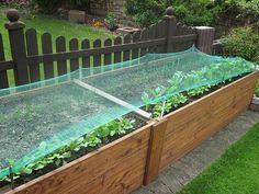 Ein Hochbeet anlegen hat viele Vorteile - alle Infos zu Materialien, Aufbau und Befüllung. Tipps zum Bepflanzen und Ernten im Garten und auf dem Balkon.