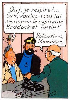 Tintin aime bien qu'on l'annonce avant qu'il fasse son entrée. C'est son côté star.