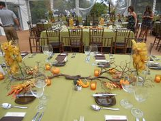 Company Party on Greensward Lawn ~ The Holden Arboretum ~ Fall 2013
