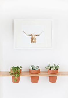 DIY Plant Hangers - DIY Hanging Planter Shelf - Cute and Easy Home Decor Ideas for Plants - How To Make Planters, Hanging Pot Holders, Wire, Rope and Baskets - Quick DIY Gifts Ideas, Macrame Plant Hanger Diy Hanging Planter, Diy Hanging Shelves, Diy Planters, Planter Ideas, Wall Shelves, Hanging Basket, Hanging Storage, Diy Simple, Easy Diy