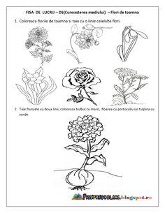 Cat Applique, Applique Quilt Patterns, Preschool Worksheets, Preschool Activities, Flower Crafts, Emoji, Bing Images, Crafts For Kids, Kindergarten