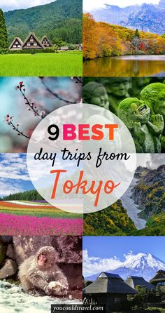 Best Day trips from Tokyo - Want a break from Tokyo? Here are the best day trips you can take from Japan's capital city. You can visit Mount Fuji, Hakone, Nikko and many more places where you can relax and recharge. #japan #tokyo #guide