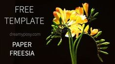This FREE tutorial and template to make Freesia paper flower is for beginner level. So easy and made from very simple suppliers.