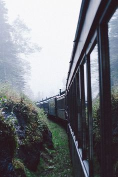 Train travel is the best - check out the scenery