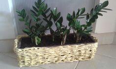 Žltý kvetináč pletený z papiera Diys, Plants, Bricolage, Planters, Diy, Do It Yourself, Plant, Planting