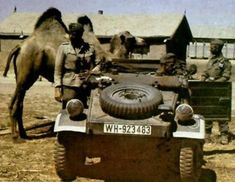 Un VW junto a soldados y un camello