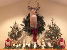 My Woodland Mantle for Christmas! Deer mount with wreath, birchbark votives, greenery and red lanterns.