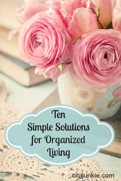 Ten Simple Solutions for Organized Living at I'm an Organizing Junkie blog