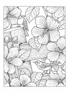 Creative Haven NatureScapes Coloring Book (Creative Haven Coloring Books) Adult Coloring Book Pages, Flower Coloring Pages, Colouring Pages, Coloring Sheets, Coloring Books, Mosaic Patterns, Painting Patterns, Fabric Painting, Colorful Pictures
