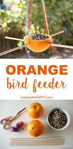 Orange Bird Feeder   Making a bird feeder out of an orange   Kids Bird Feeders   Kids Summer Activities   www.madewithHAPPY.com