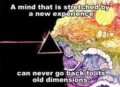 a mind stretched by new experience can never go back to its old dimensions. // Oliver Wendell Holmes