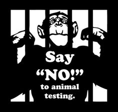 This year I'm going to be more attentive to the products I use and their policies on animal testing.