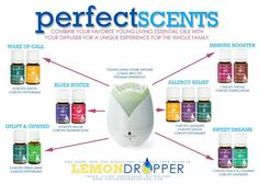 Young Living essential oils in your diffuser.