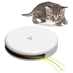 Feline's Tempting Teaser – You want to really tease your cat? This toy will have your cat playing, hunting, and trying to catch this twirling laser. This dinner plate-sized device will have your cat trying to catch this laser non-stop for hours. Don't worry this actual will not twirl for hours. It's just I would be so entertain seeing the cat chasing this... #catcatch #cathunt #catplay