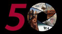 Wildlife Photographer of the Year Exhibition - Bristol - November 2014