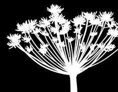Black And White Dandelion Part 1 Digital Art by Nomi Elboim ...