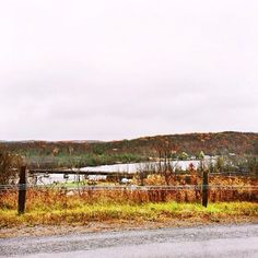Trent Hills, Northumberland County North Shore, Farmer, Ontario, Fields, Country Roads, Canada, Places, Outdoor, Beautiful