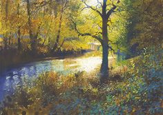 River Light by Richard Thorn