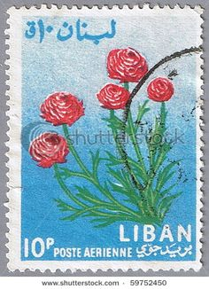 Lebanon Circa 1964 Stamp Printed Lebanon Stock Photo (Edit Now) 59752450 Postcard Printing, Stamp Printing, Rare Stamps, Vintage Stamps, Flower Stamp, Flower Art, Ranunculus Flowers, Roses, Old Coins