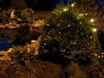 DecoLED Vám prináša revolučné riešenie pre osvietenie Vašich stromov, domov a iných objektov.