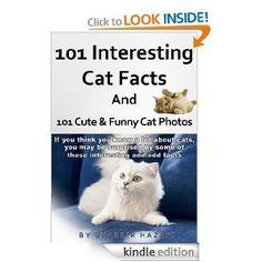 101 Interesting Cat Facts