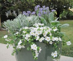 DIY Outdoor Planters: A Cool Palette for Hot Weather: Gardenista