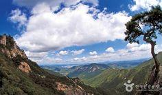 굽이굽이 능선마다 구름모자를 쓴 아름다운 내륙의 비경, 계룡산