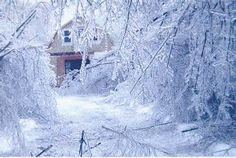 Maine Ice Storm 1998 - - Yahoo Image Search Results