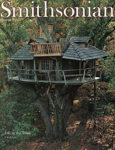 how magical to live in a tree!