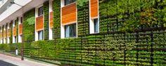 Resultado de imagem para arquitetura organica e ecológica