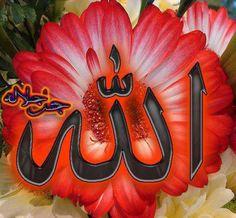 DesertRose... Allah Muslim Pictures, Surrender To God, Allah God, Allah Wallpaper, Islamic Art Calligraphy, Religious Quotes, Alhamdulillah, Worship, Wraps