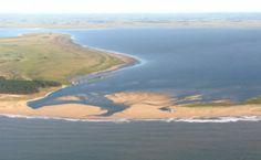 Aprueban el Plan de manejo del paisaje protegido de la laguna Rocha