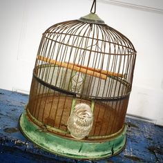 A personal favorite from my Etsy shop https://www.etsy.com/listing/486185601/vintage-birdcage-metal-birdcage-green