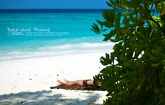 Summer holiday 2012 : Tachai Island