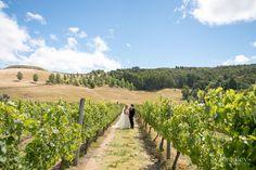 vineyard-weddings-hawkes-bay  wedding-flowers-hawke's-bay  Hawke's Bay wedding photographers, Eva Bradley Photography  https://www.evabradley.co.nz/