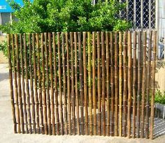 This fence would be perfect for my south garden bed.  Ornamental black bamboo fence, OBF-48B   Can be found at www.mastergardenproducts.com.
