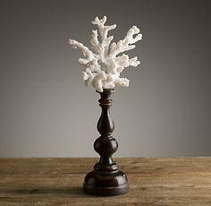 Natural Specimens   Restoration Hardware   coral on a candlestick