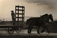 """Amish Skateboard"" - Paul Grillo  Des Moines, IA  Taken in Lineville, IA"