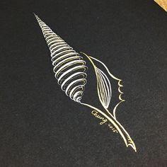 書法插畫-貝殼    #nib #shell #draw #calligraphy #design #illustration #art #繪畫 #英文書法